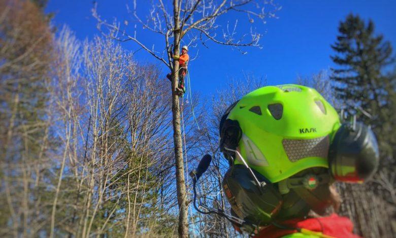 (c)HTM - Flughelfer und Forstspezialist