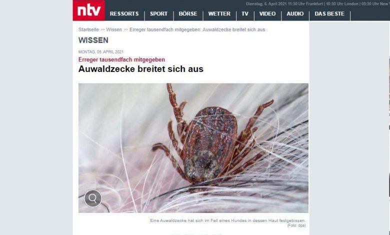 Photo of Babesien – Auwaldzecke auf dem Vormarsch