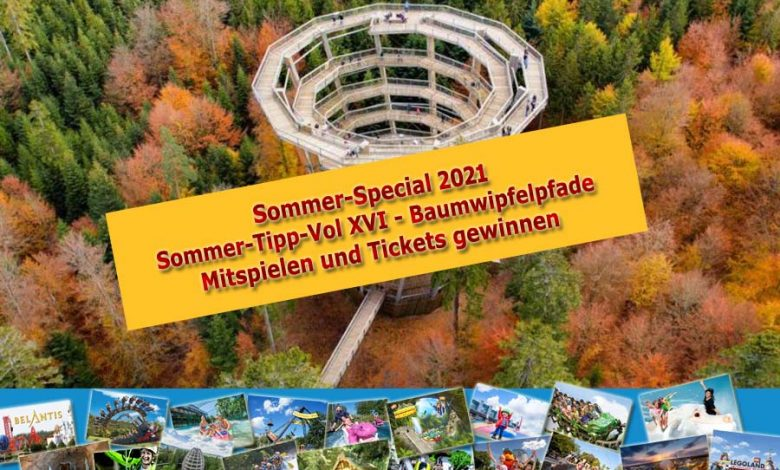 Photo of Unsere Lieblings-Spots Vol XVI: Baumwipfelpfade