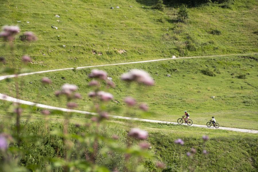 (c)Chiemsee-Chiemgau Tourismus e.V.- Mountainbike-Tour zur Dalsenalm