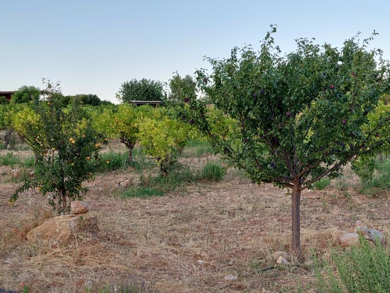 (c)be-outdoor.de - Hotelcheck Quinta do Mare Algarve