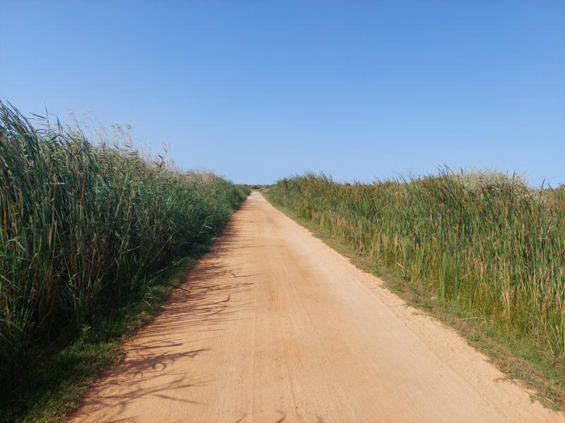 (c)be-outdoor.de - Mega Sport - Cycling Algarve Portugal