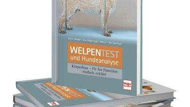 "Photo of Buchtipp: ""Welpentest und Hundeanalyse"""