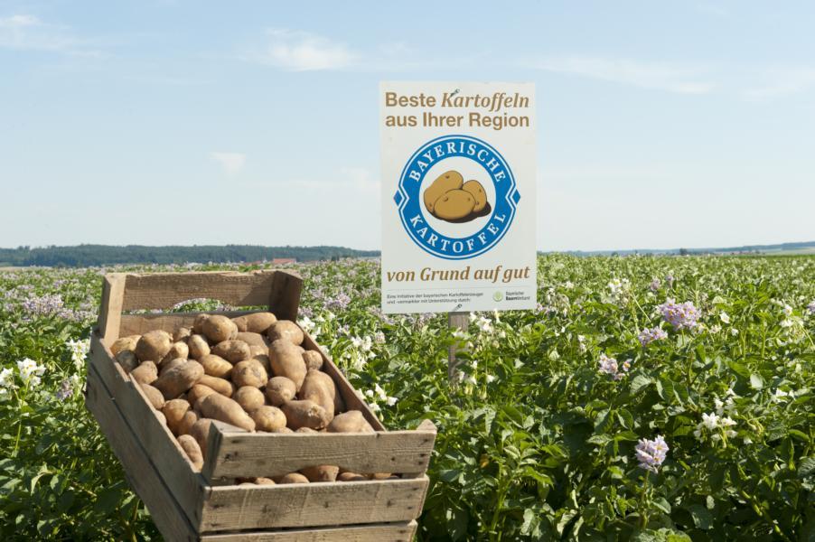 (c)Schuhmann Bayerische Kartoffel